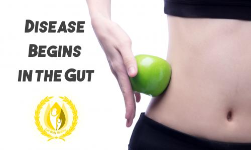 Disease Begins in the Gut